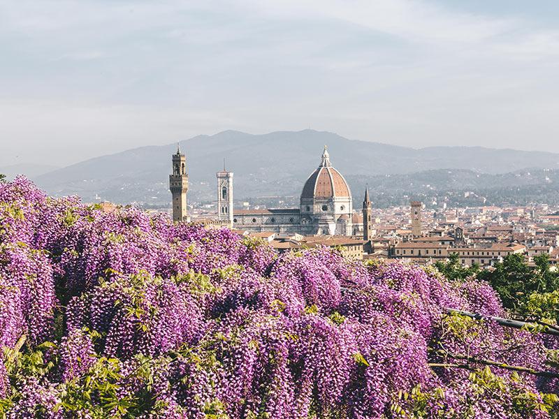 Gite in Giornata Italia